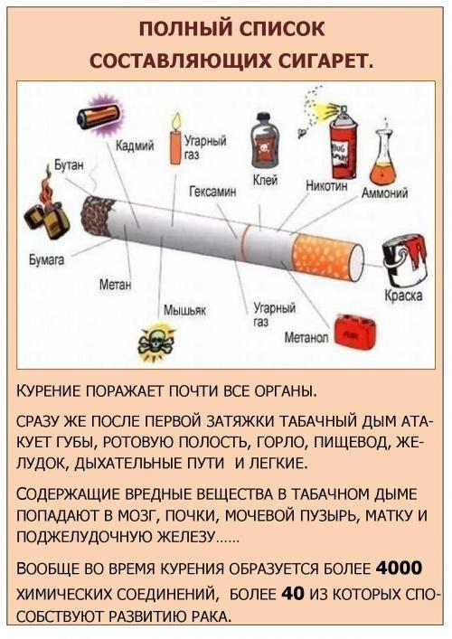 Доклад на тему алкоголь и курение
